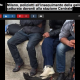 (DA BUTTARE) Milano, poliziotti all'inseguimento della gallina nera: catturata davanti alla stazione Centrale