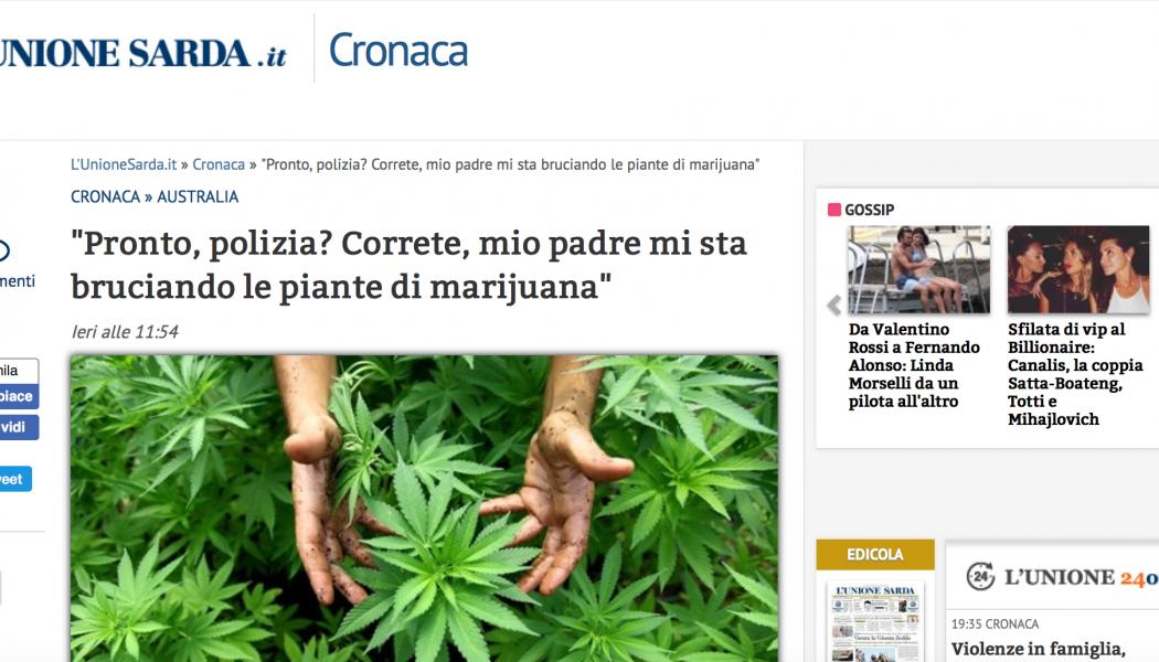 (NOTIZIE TROPPO VERE) Pronto Polizia? Correte, mio padre mi sta bruciando le piante di marijuana